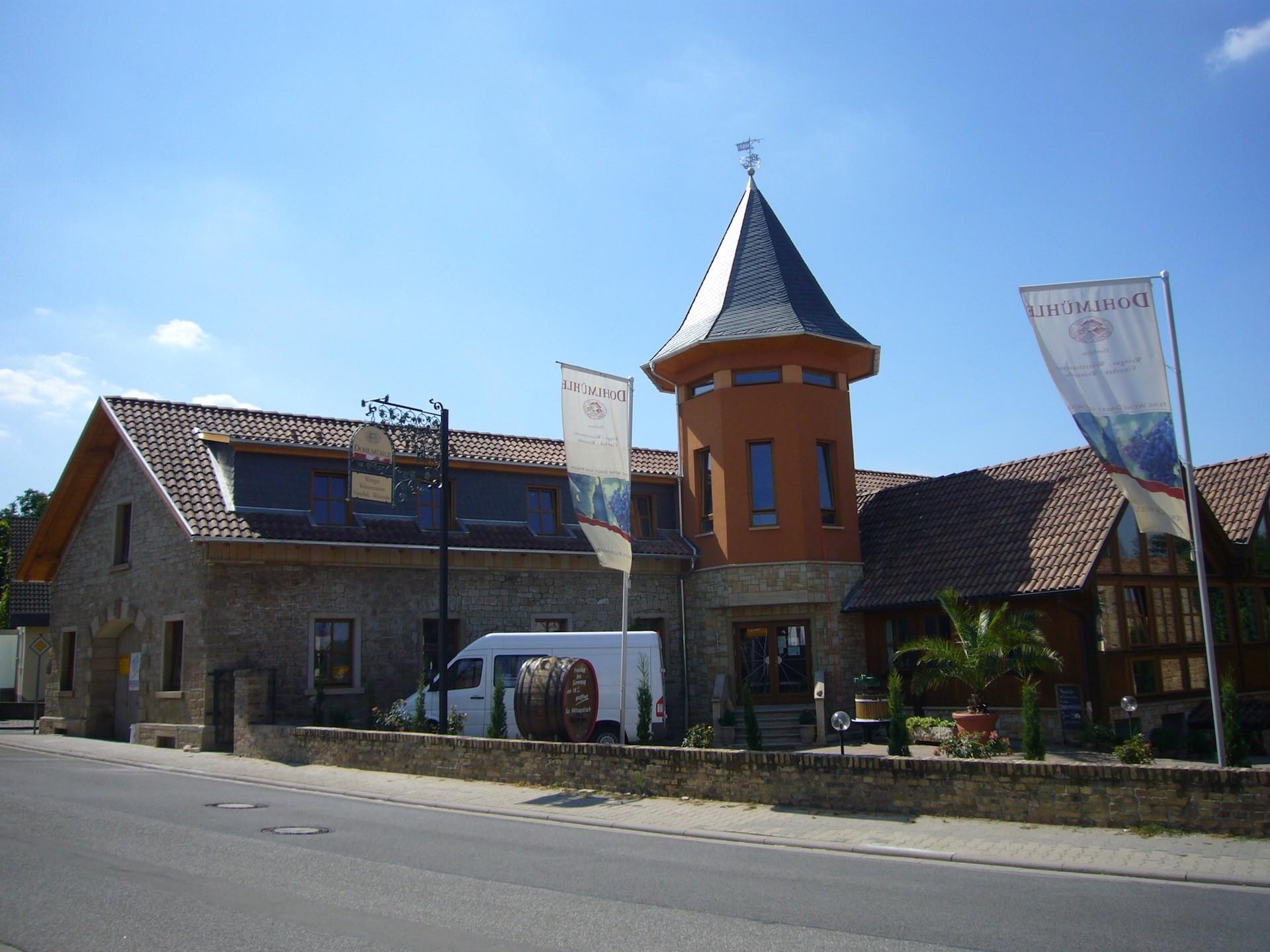 Weingut Dohlmühle in Flonheim